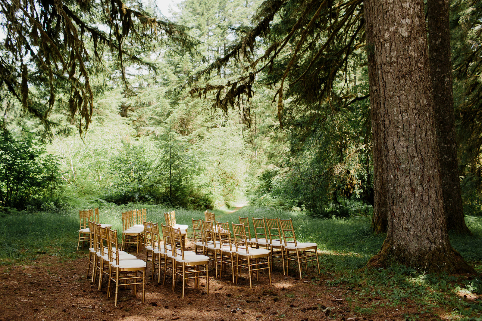 Silver Falls State Park Wedding by Anna Jaye Photography 026