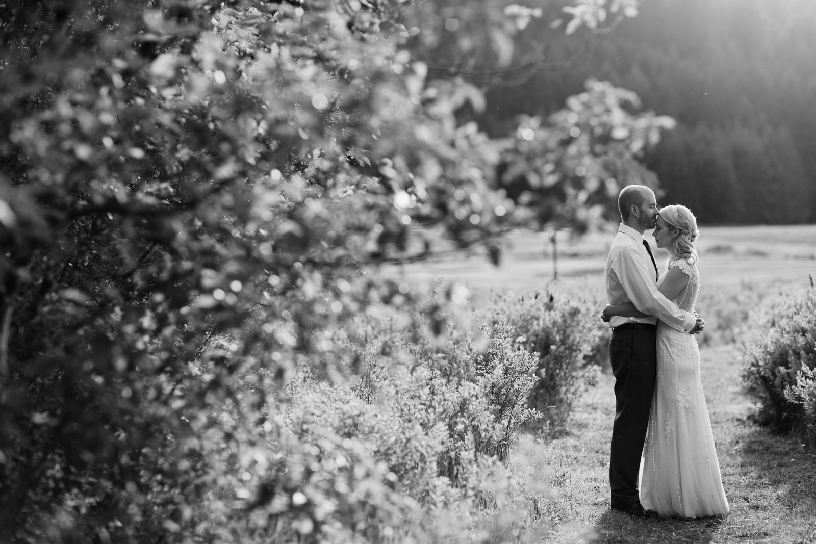 Silver Falls State Park Wedding by Anna Jaye Photography 094