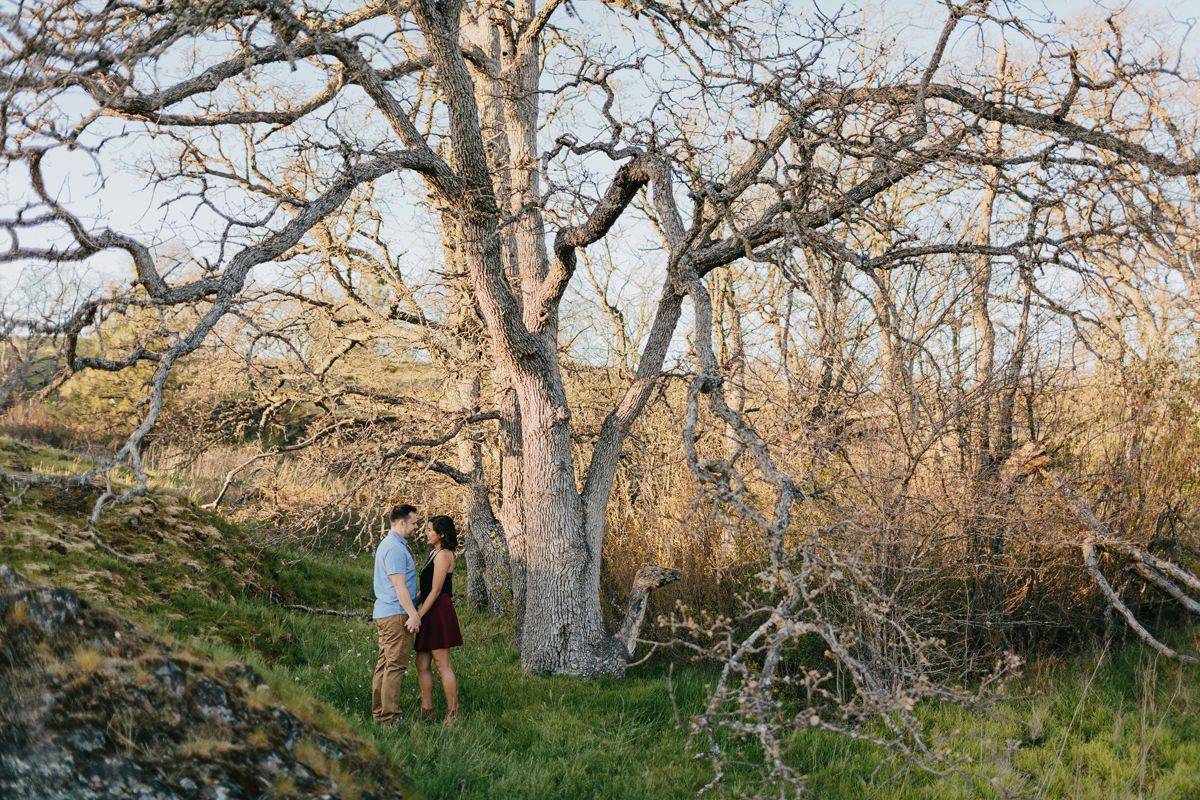 Columbia River Gorge Engagment photos 014