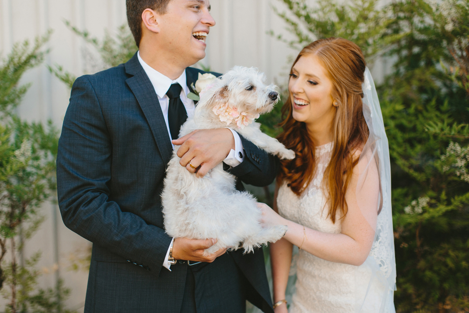bride and groom with pup